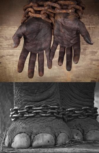 slavery_comparison